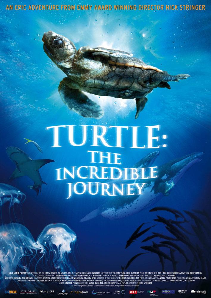 Turtle: The Incredible Journey kapak