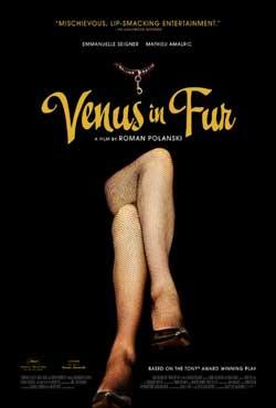 Venus in Furs kapak