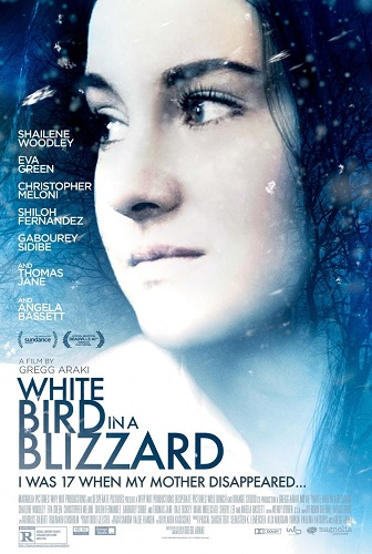 White Bird in a Blizzard kapak