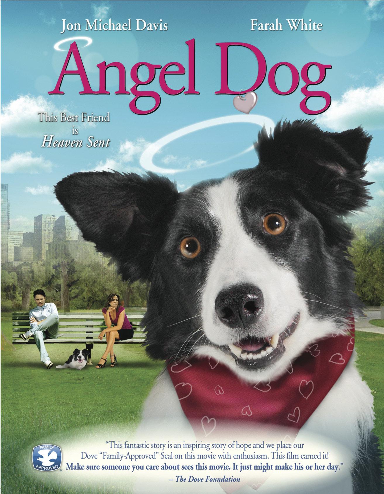 Angel Dog kapak
