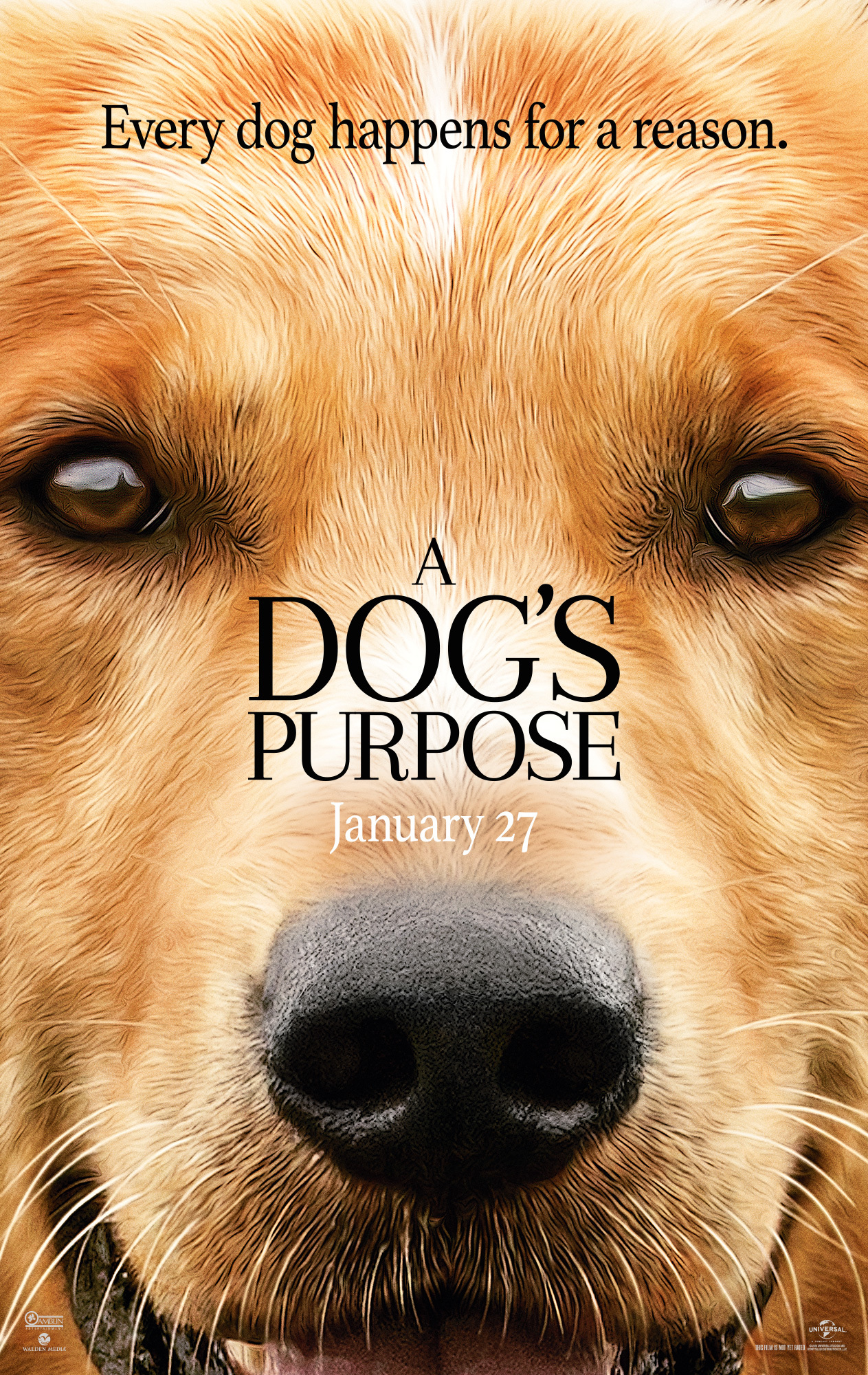 A Dog's Purpose kapak