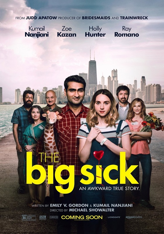 The Big Sick kapak