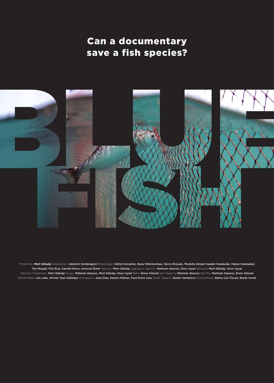 Bluefish kapak