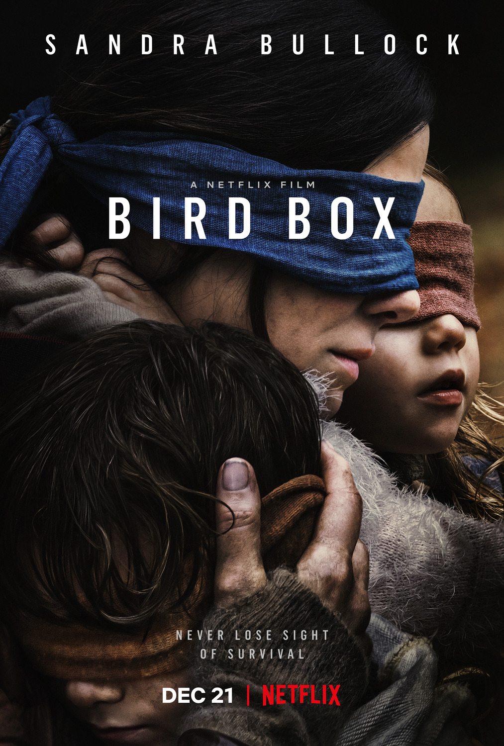 Bird Box kapak