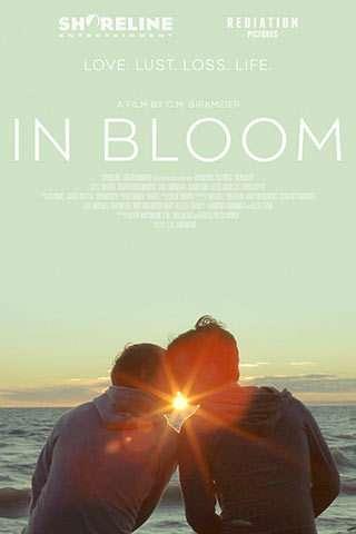 In Bloom kapak