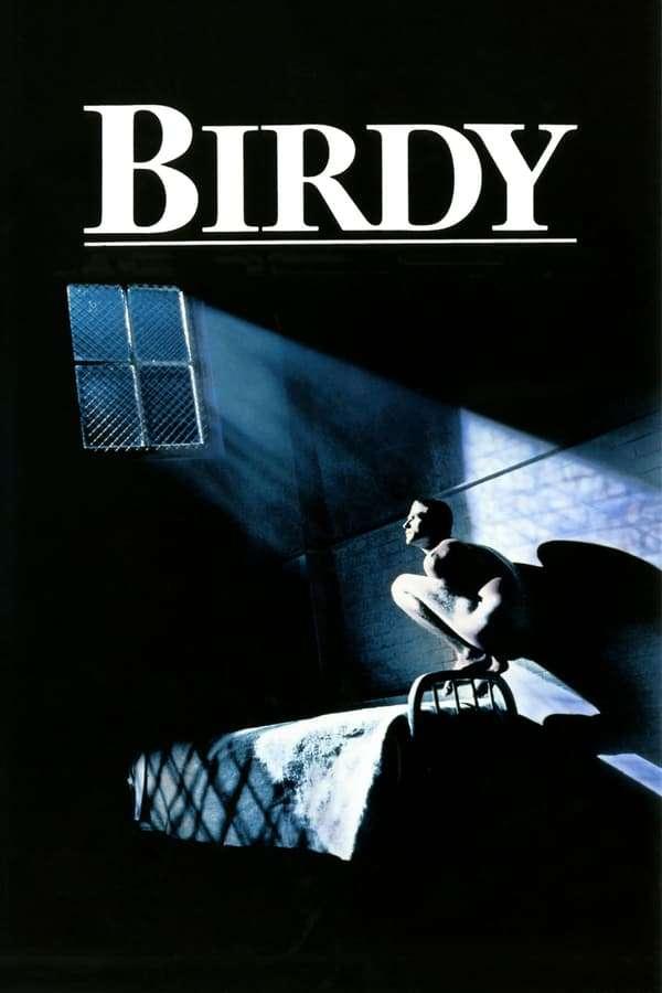 Birdy kapak