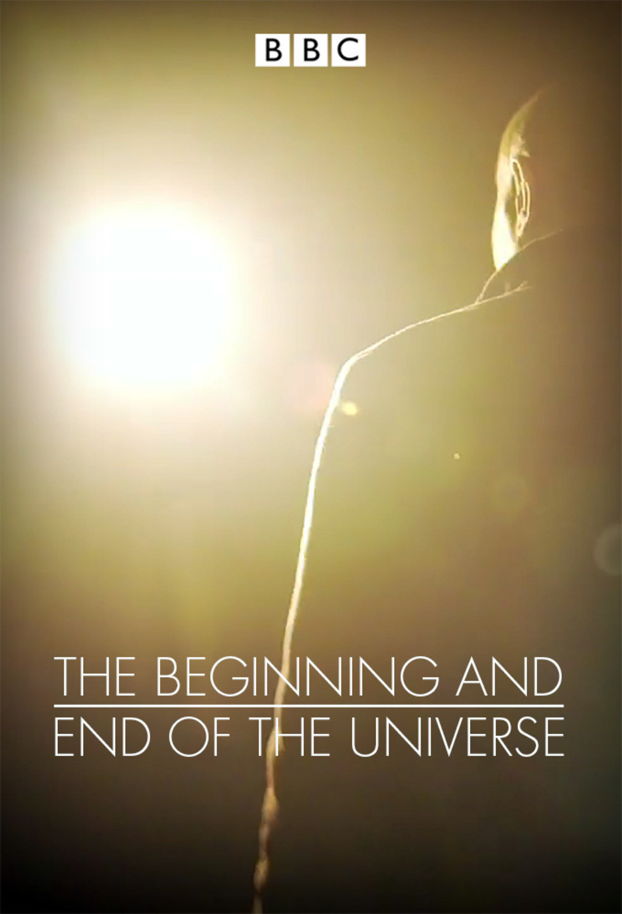 The Beginning and End of the Universe kapak