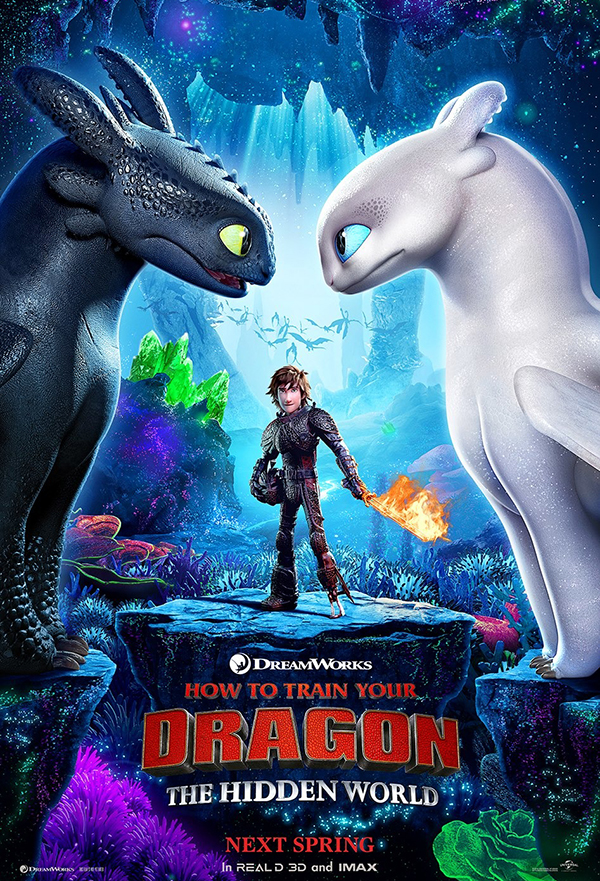 How to Train Your Dragon: The Hidden World kapak