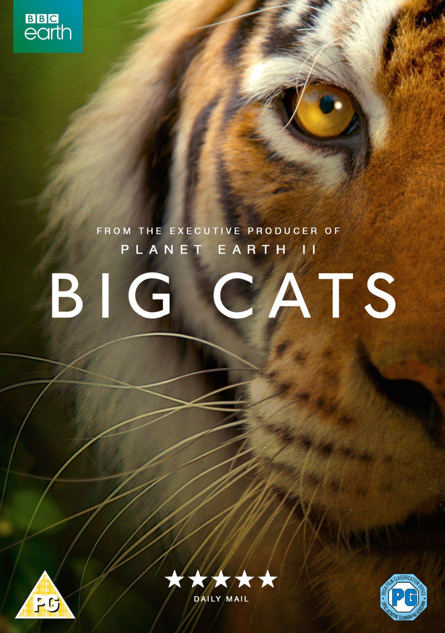 Big Cats kapak