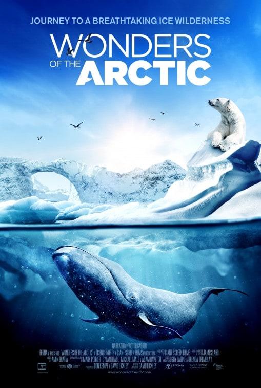 Wonders of the Arctic 3D kapak
