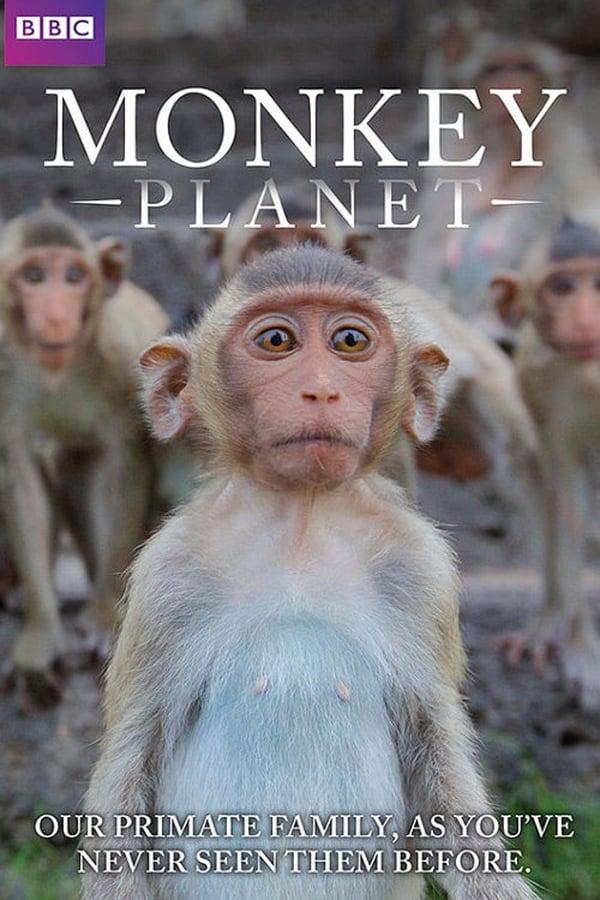 Monkey Planet kapak
