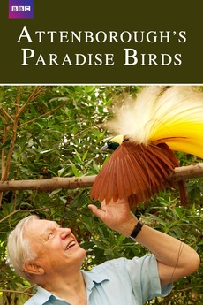Attenborough's Paradise Birds kapak