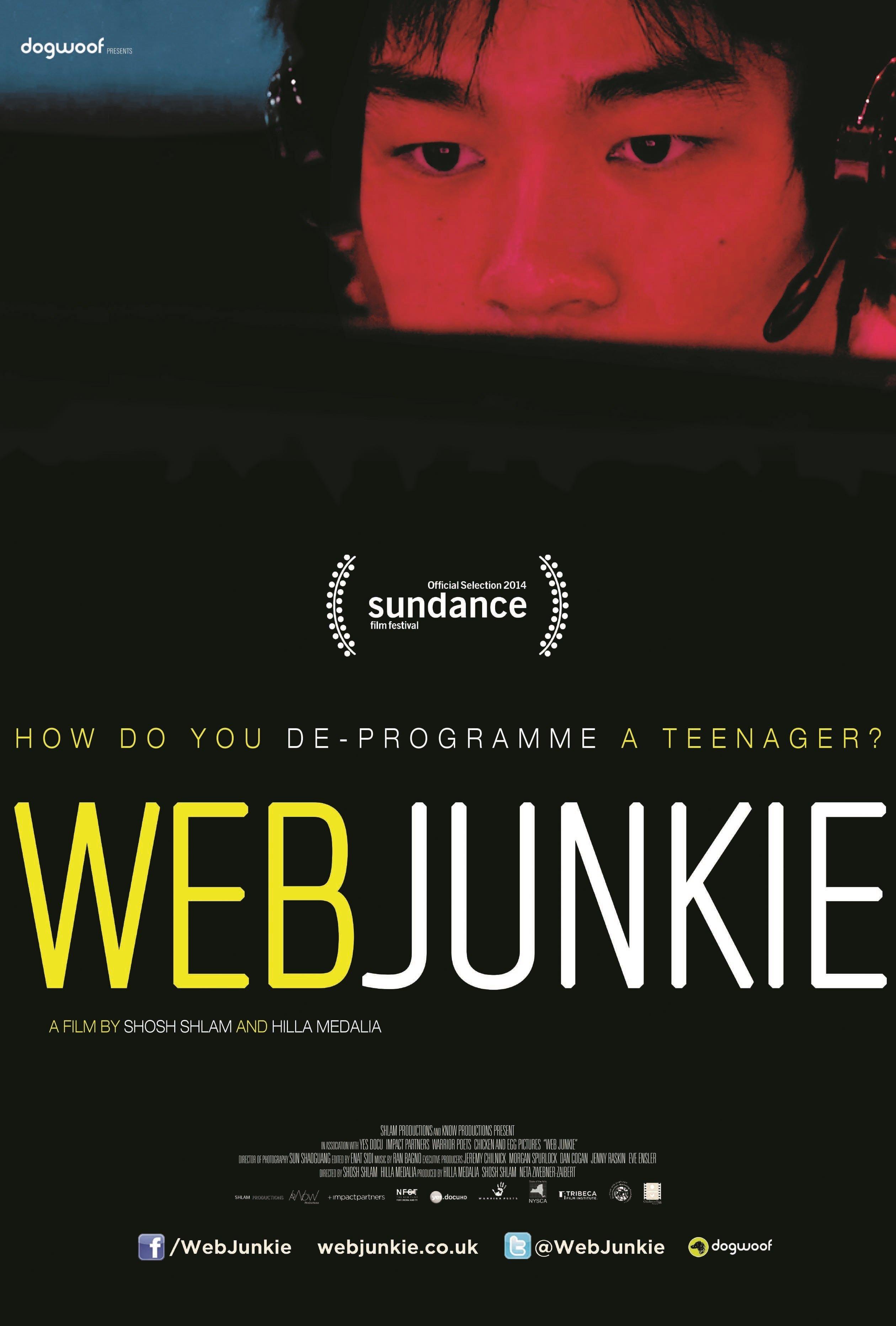 Web Junkie kapak