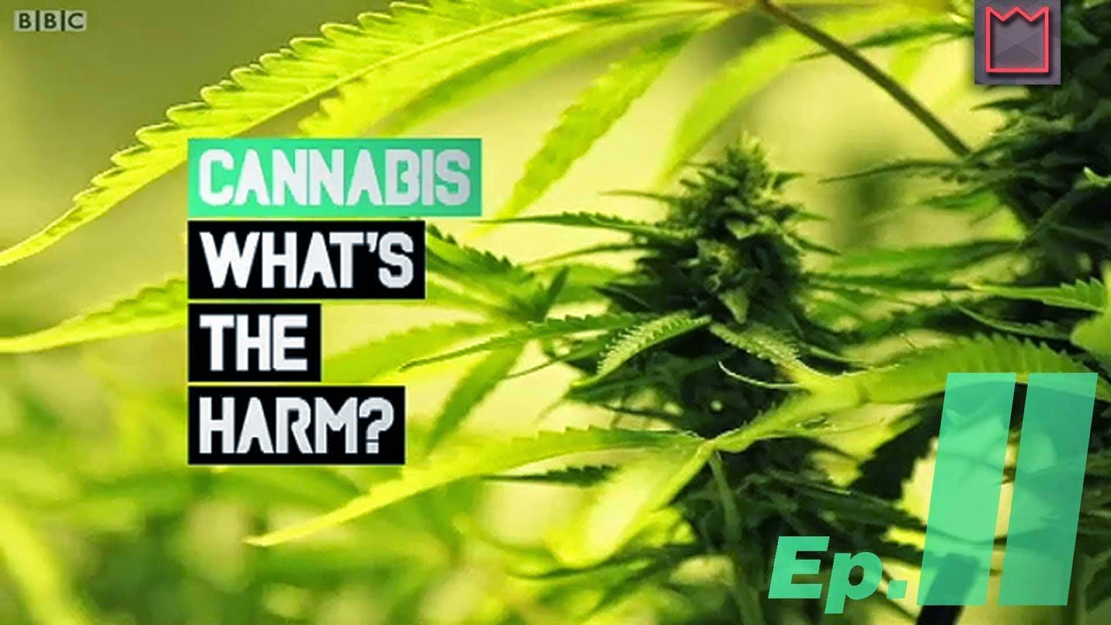 Cannabis: What's the Harm? kapak
