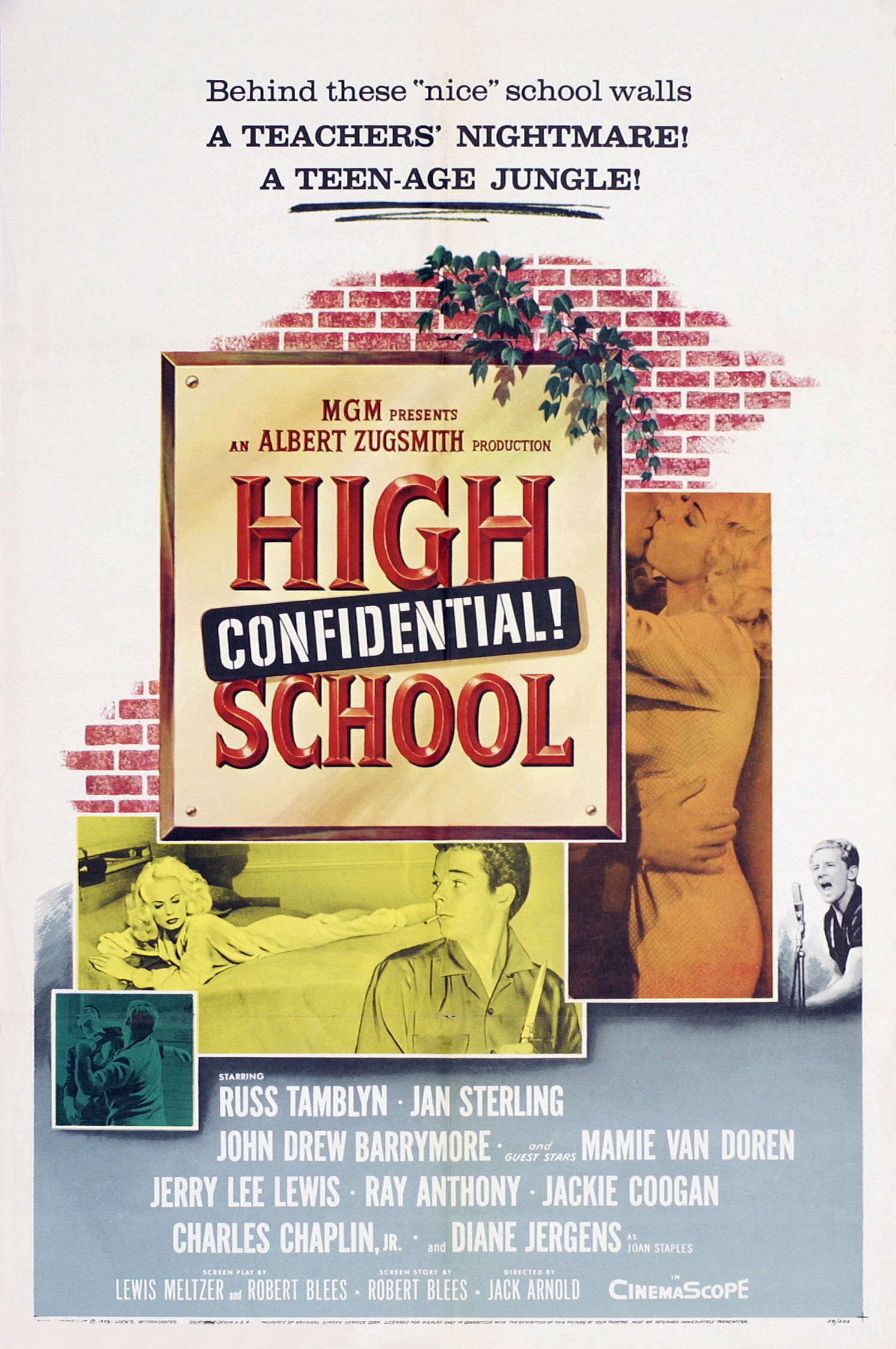 High School Confidential! kapak