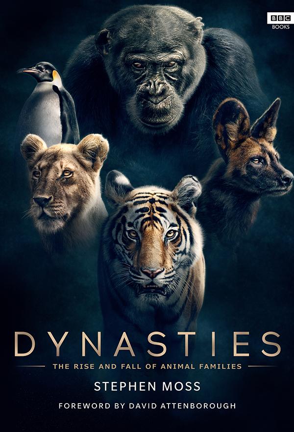 Dynasties kapak
