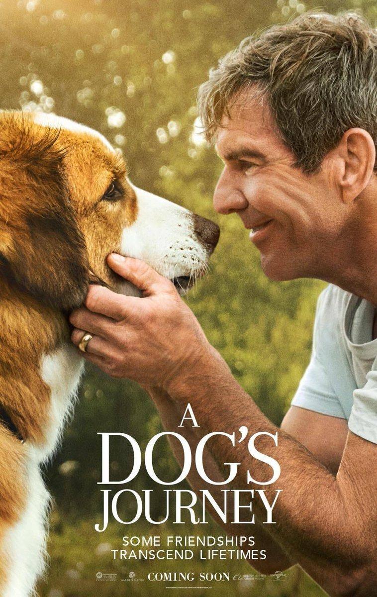 A Dog's Journey kapak
