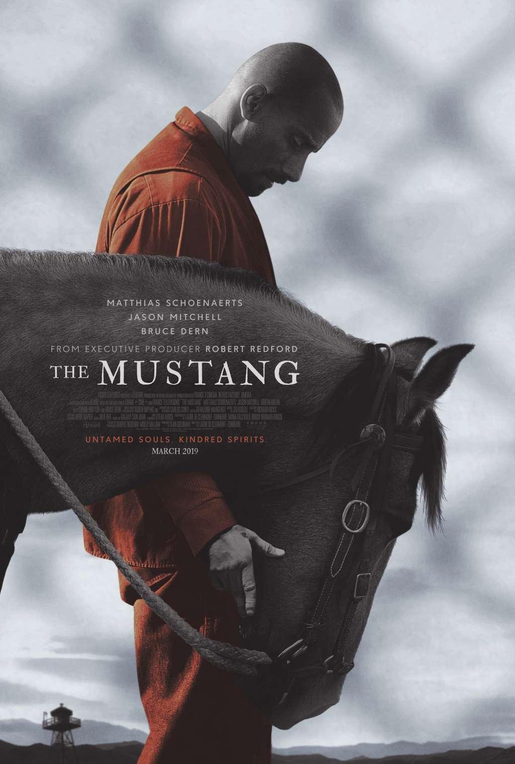 The Mustang kapak