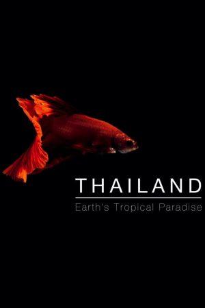 Thailand: Earth's Tropical Paradise kapak
