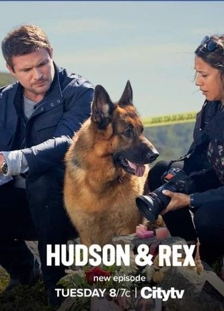 Hudson & Rex kapak