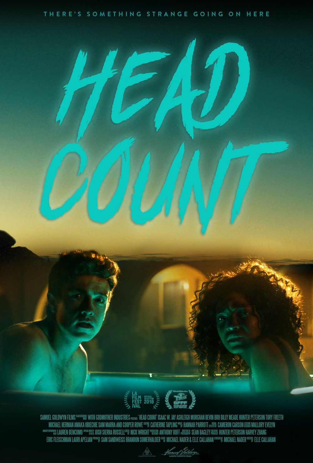 Head Count kapak