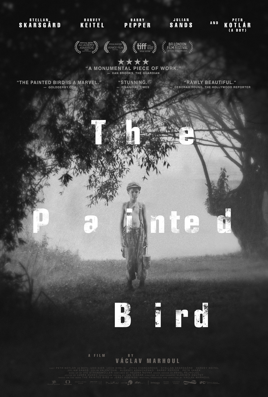 The Painted Bird kapak
