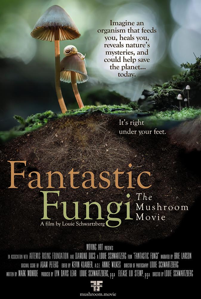 Fantastic Fungi kapak