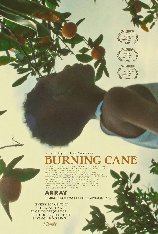 Burning Cane kapak