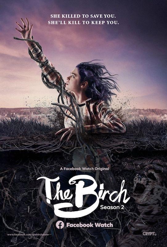 The Birch kapak