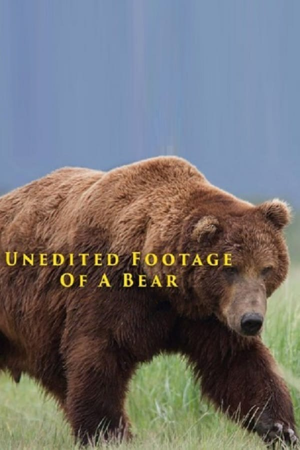Unedited Footage of a Bear kapak