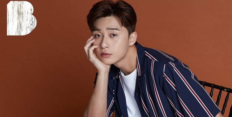 Park Seo Joon, Dream'in Kadrosunda